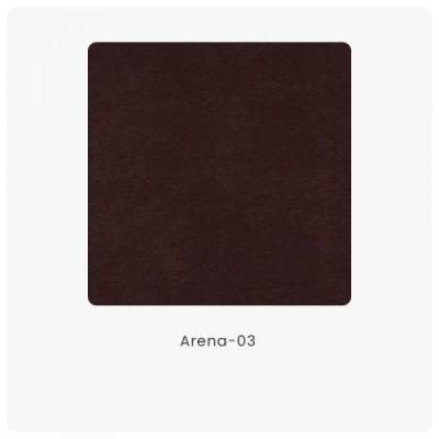 Arena 03