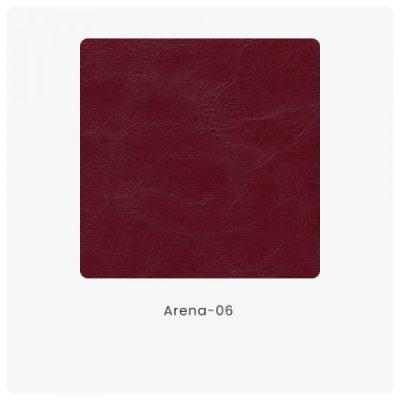 Arena 06