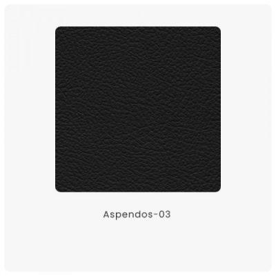 Aspendos 03