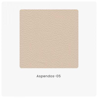 Aspendos 05