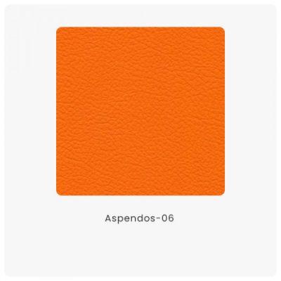 Aspendos 06
