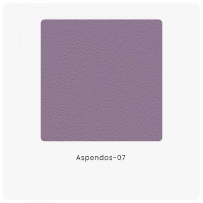 Aspendos 07