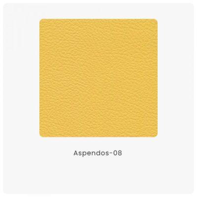 Aspendos 08