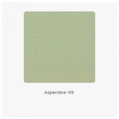 Aspendos 09