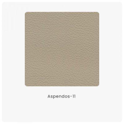 Aspendos 11