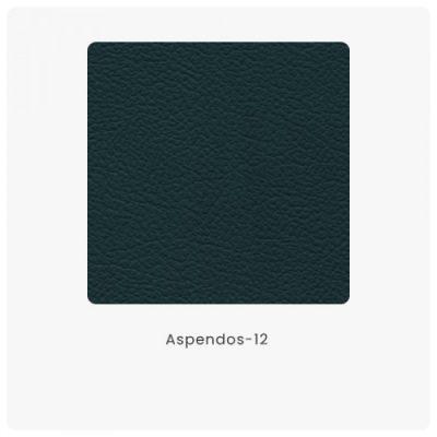 Aspendos 12