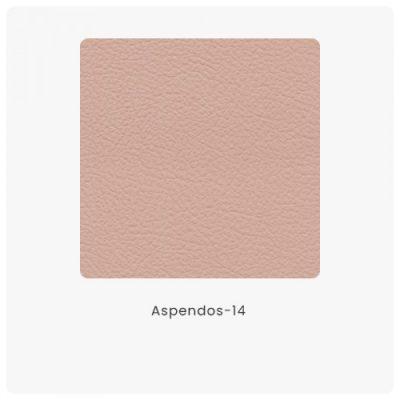 Aspendos 14