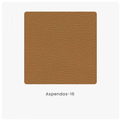 Aspendos 16