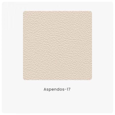Aspendos 17