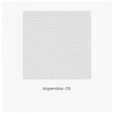 Aspendos 20