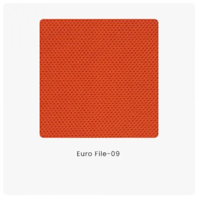 Euro File 09
