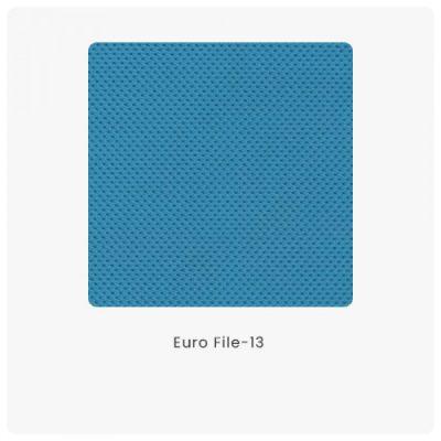 Euro File 13