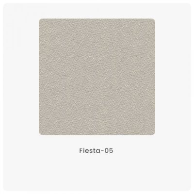 Fiesta 05