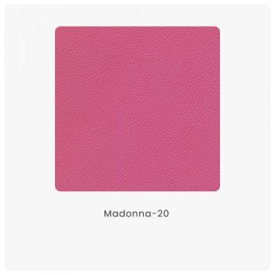 Madonna 20
