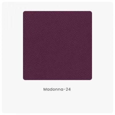 Madonna 24