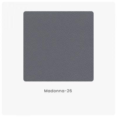 Madonna 26