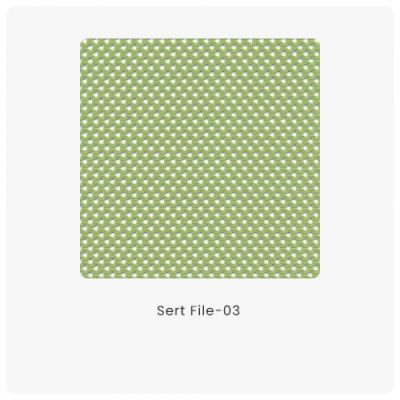 Sert File 03
